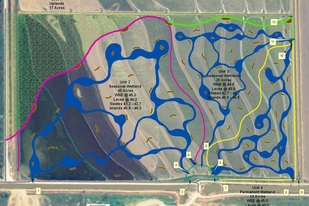Proposed Wetland Restoration
